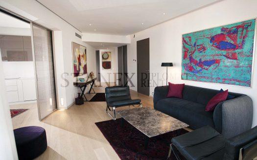 Two bedroom apartment Vracar Belgrade S2180
